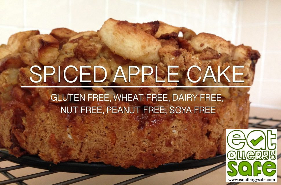 Gluten Free and Dairy Free Spiced Apple Cake
