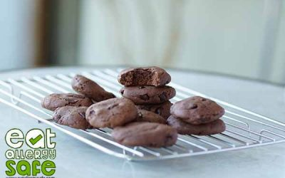 Gluten, Nut & Dairy Free Chocolate Chip Cookies (Feat. Free From Fairy Flour & Plamil Chocolate)